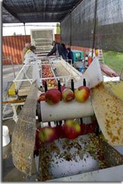 rack and cloth cider press